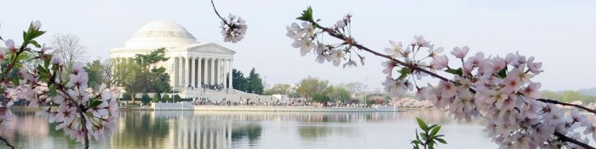 Study English in Washington DC, home to America's most beautiful monuments