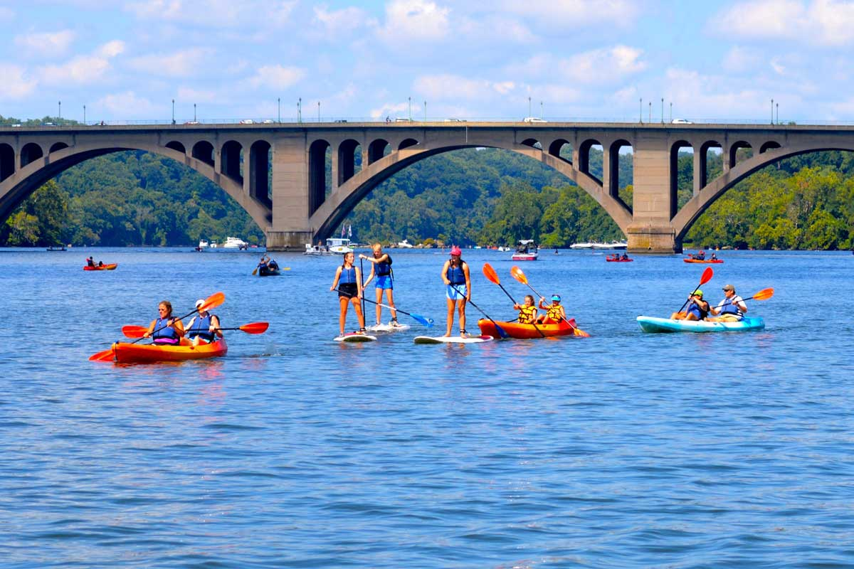 Top 10 Aquatic Activities in the DC Area