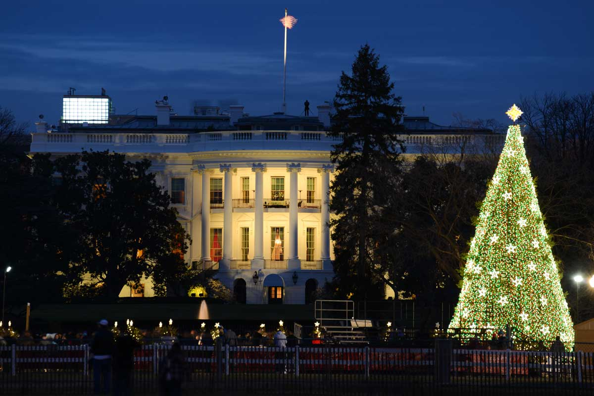 17 Things for Students Studying English to Do in DC This December