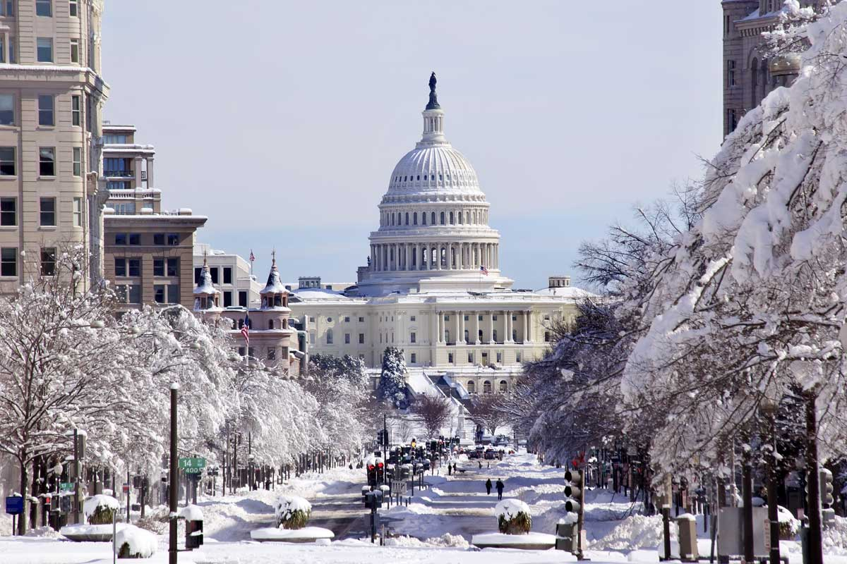 Things for English Students to Do This Winter in Washington DC